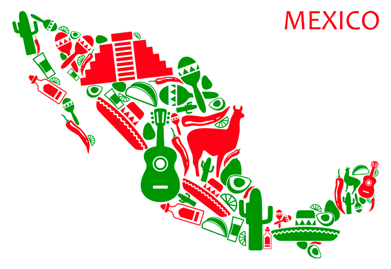 STANDARD  MEXICAN AUTO INSURANCE  COVERAGE