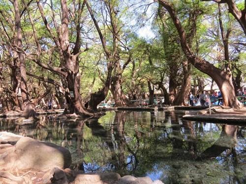 Lago de Cuamécaro Michoacán