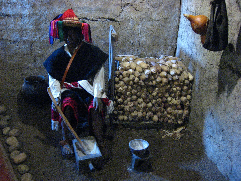 Museum of Mayan medicine in San Cristóbal de las Casas