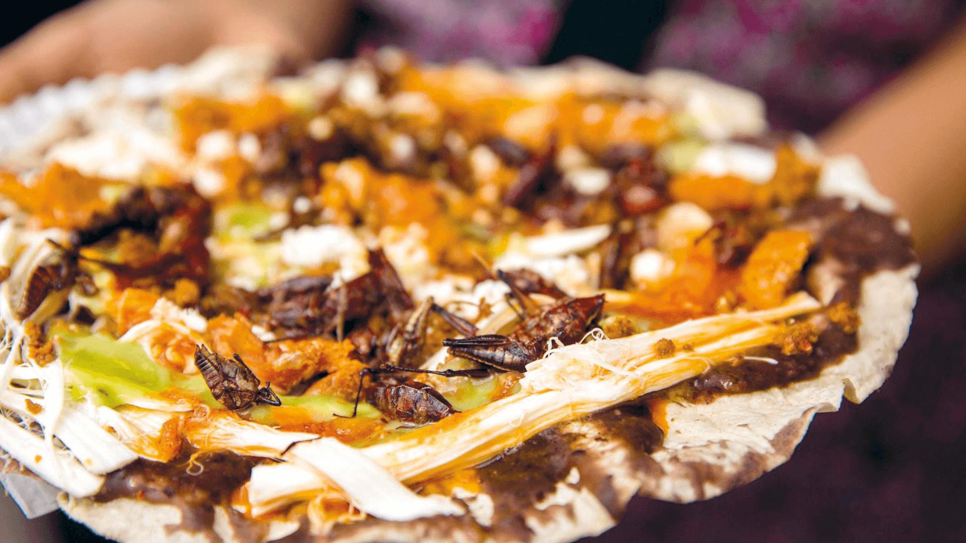Traditional Delights of Oaxaca - Tlayuda