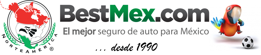 Bestmex Blog